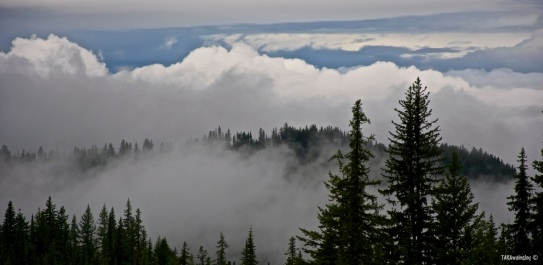 Misty Mountian Clouds