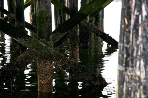 Below the Docks