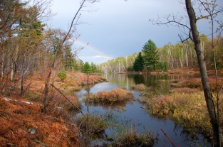 Rainbow into Marsh