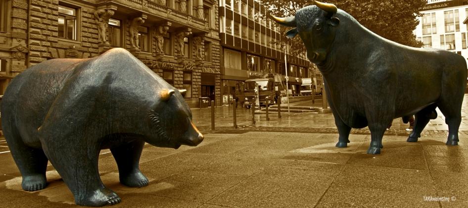 The Bear and Bull