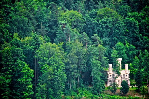 Castle in the Trees