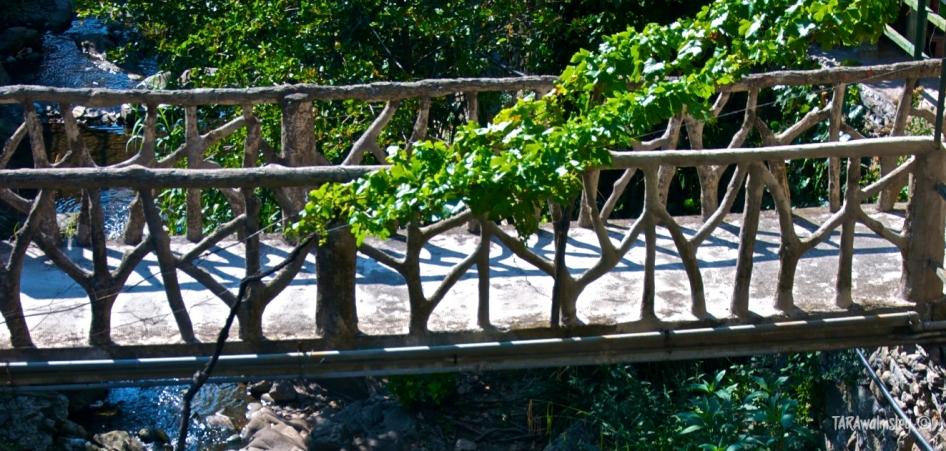 Treelined Handrail